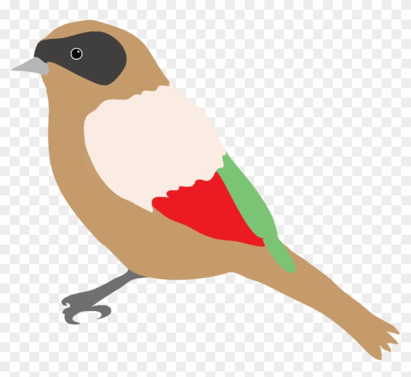 Parrot Clipart Tropical - Colorful Birds Flying Clipart - Png Download  (#7263) - PinClipart