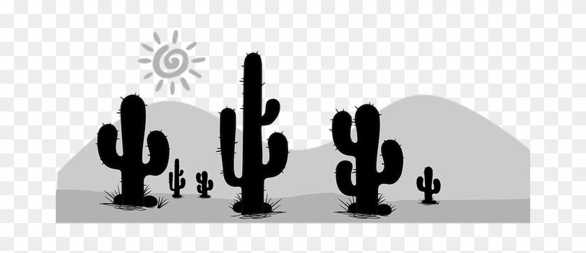 Cactus Cacti Desert Flora Death Valley Scr - Cacto Preto E Branco #184981