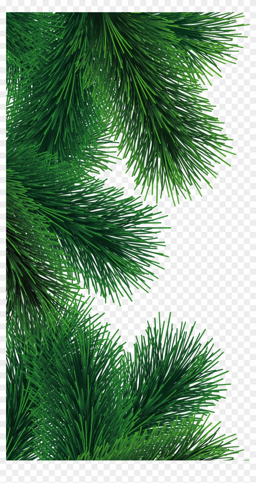 Christmas Fir Tree Png #1072795
