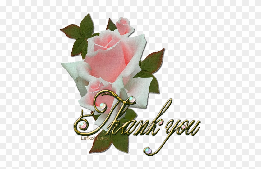 Thank You For Following Me And Sharing Beautiful - Beautiful Thank You Gif #1083655