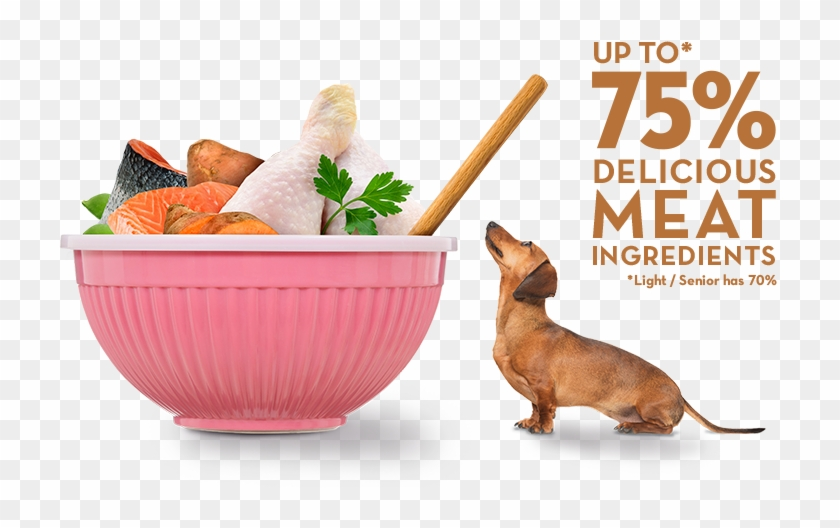 Naturally Tastier - Dog Food #1086175
