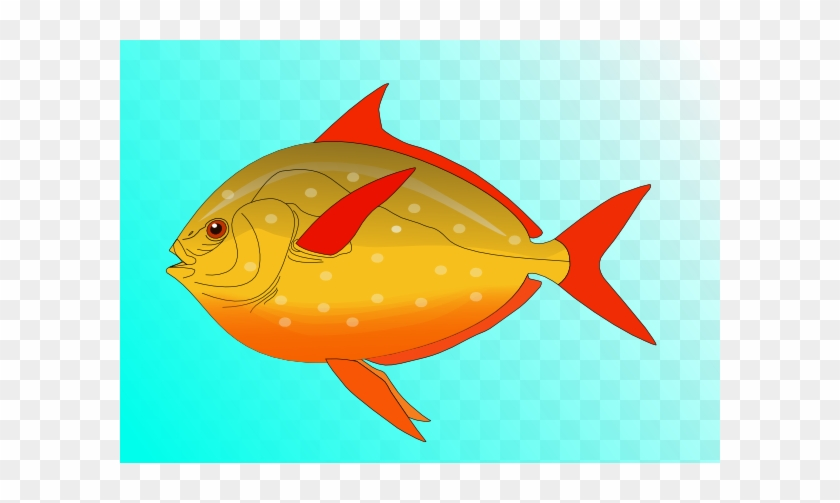 Colorful Fish In Water Clip Art - Tropical Fish Shower Curtain #1089172