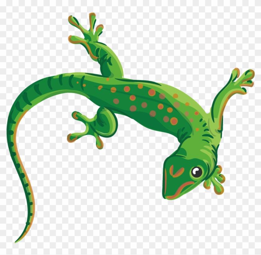 Reptile Lizard Chameleons Euclidean Vector Illustration - Lizard Transparent Vector #1090268