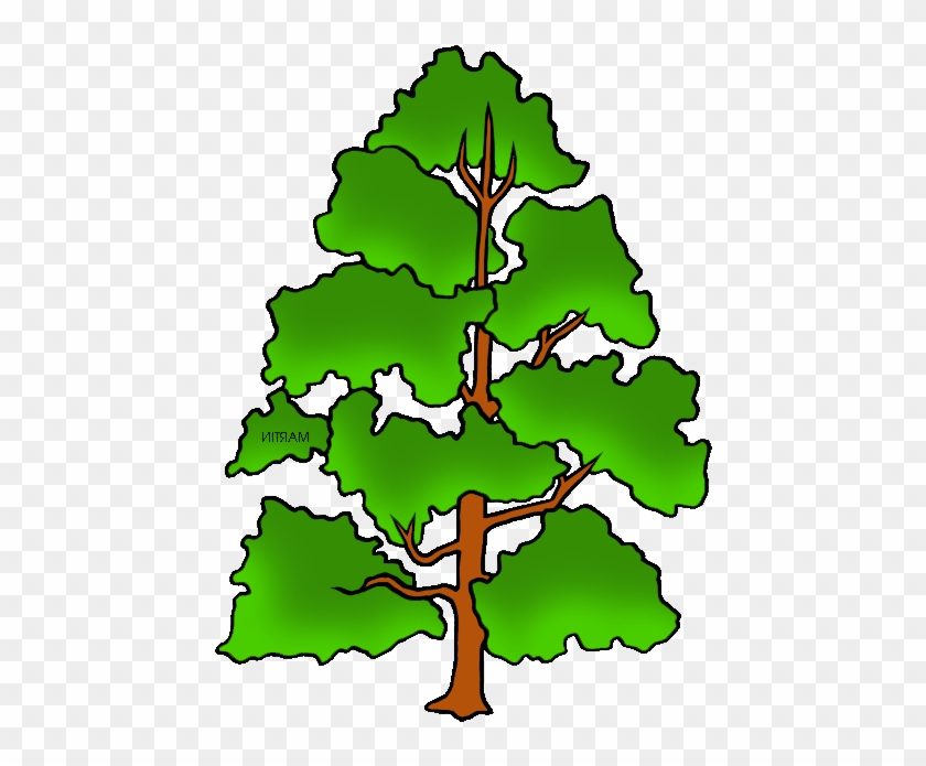 Free United States Clip Art By Phillip Martin, State - Phillip Martin Clipart Tree #1093351