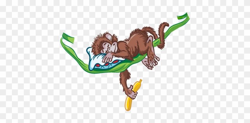 Sleeping Monkey - Mono Durmiendo Para Dibujar #1093433