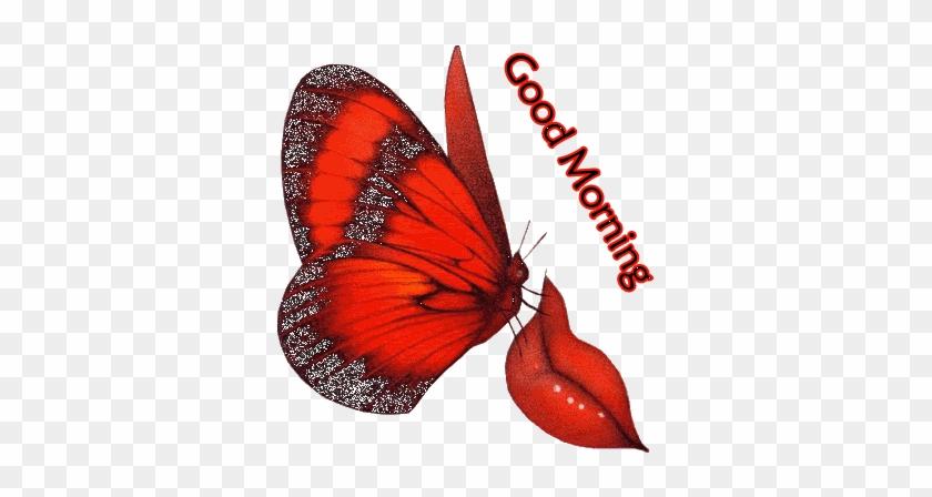 Good Morning Love Gif Animation Good Morning Love Gif Free