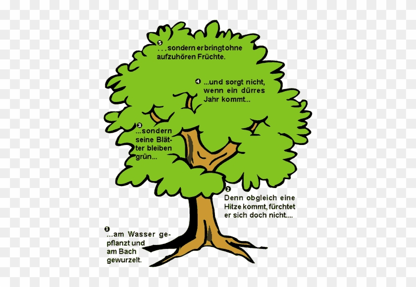 Baum Comic #1094387