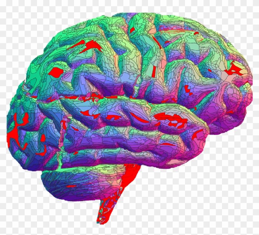 гифка мозга нет много разных идей