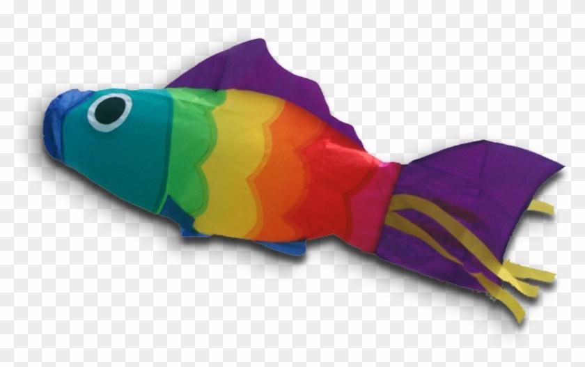 51113 Windsock Rb Fish Poisson Vis - Poisson Arc-en-ciel Manche À Air Didakites #1095277