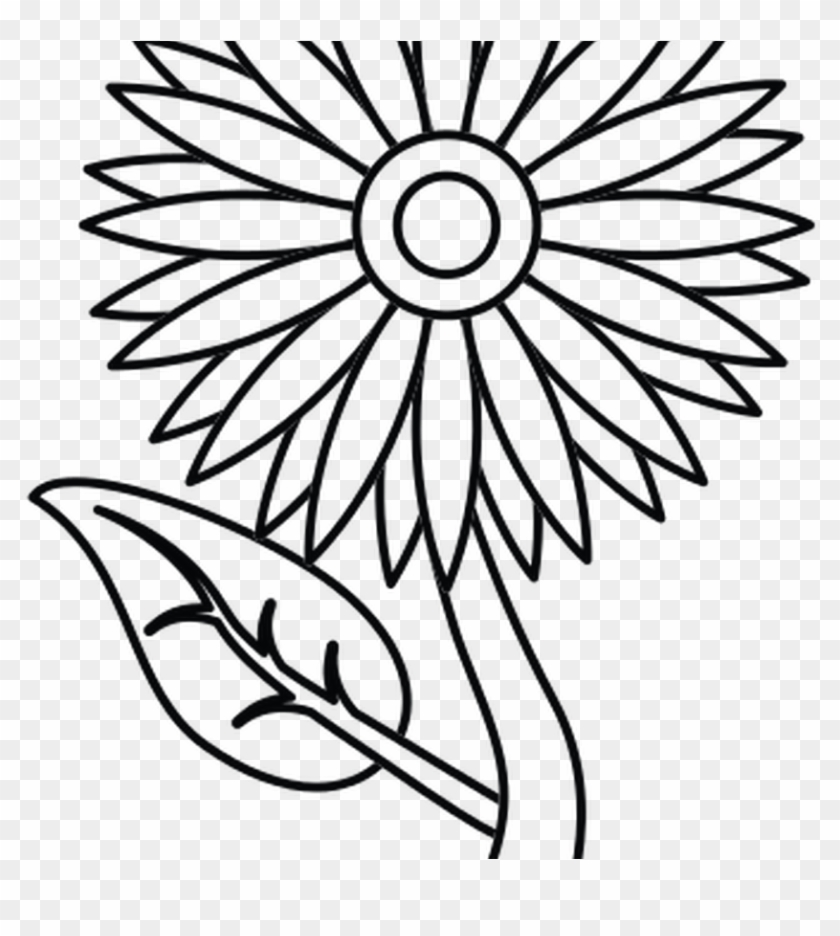 Sunflower Outline Pictures To Pin Thepinsta - Lotus Flower Png Clip Art #1100042