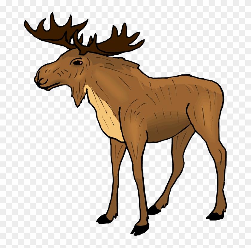 Moose Clipart R5dcjy Clipart - Moose Clipart #188987