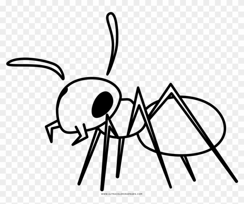 Ant Coloring Page - Cesty Nitra - Free Transparent PNG ...
