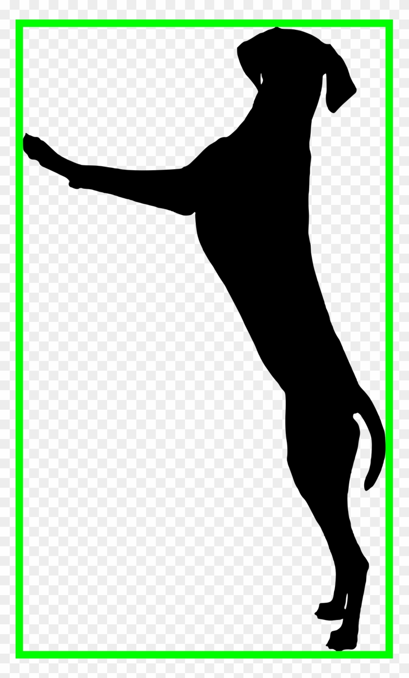 dog bone silhouette - 745×1280