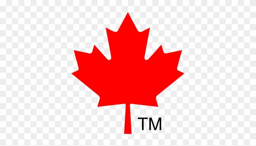 Skat Stars Canada - Canada Flag Maple Leaf #1114123