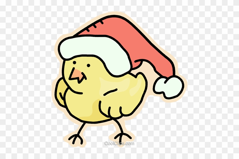 Santa's Helper Royalty Free Vector Clip Art Illustration - Chickens With Christmas Hat #1116214