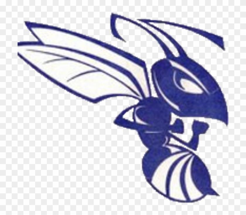 Deep Creek Logo - Deep Creek High School Mascot #1118704