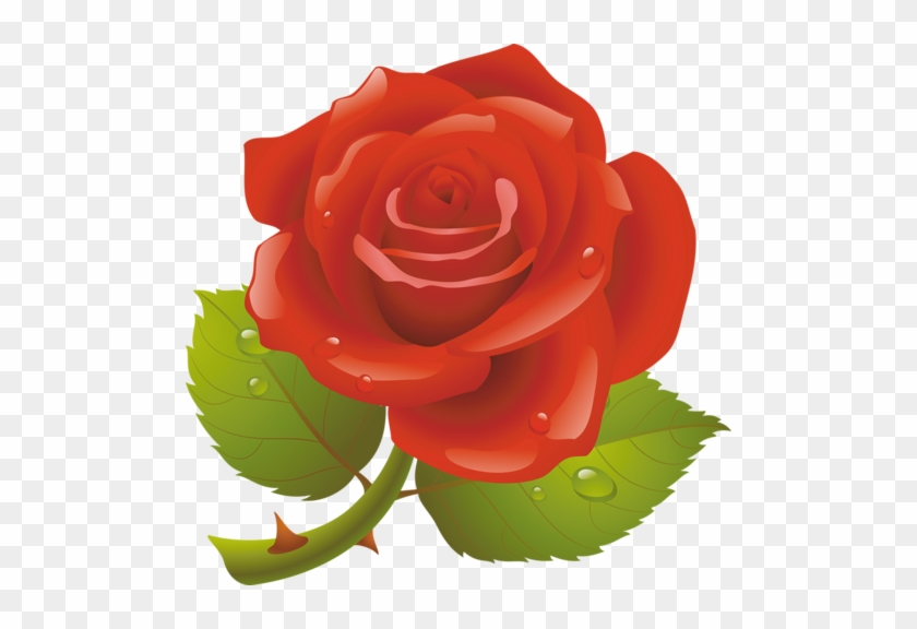 Christine staniforth good morning in arabic free christine staniforth good morning in arabic m4hsunfo