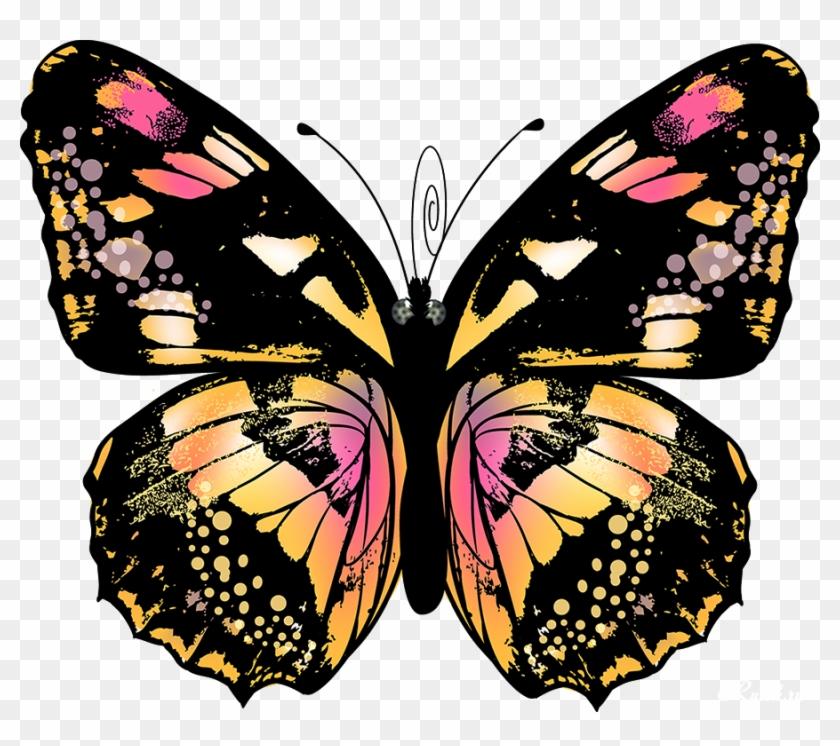 Изображение Для Плейкаста - Анимированные Бабочки На Прозрачном Фоне #1120491