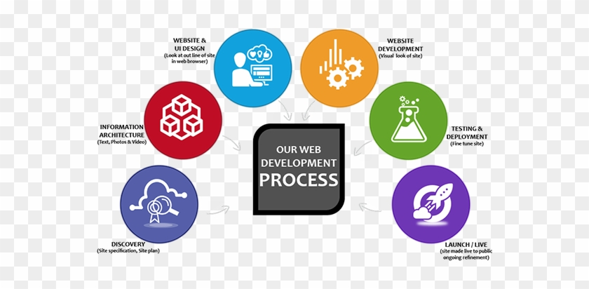 Web Development Service - Design Process Test Phase - Free Transparent PNG  Clipart Images Download
