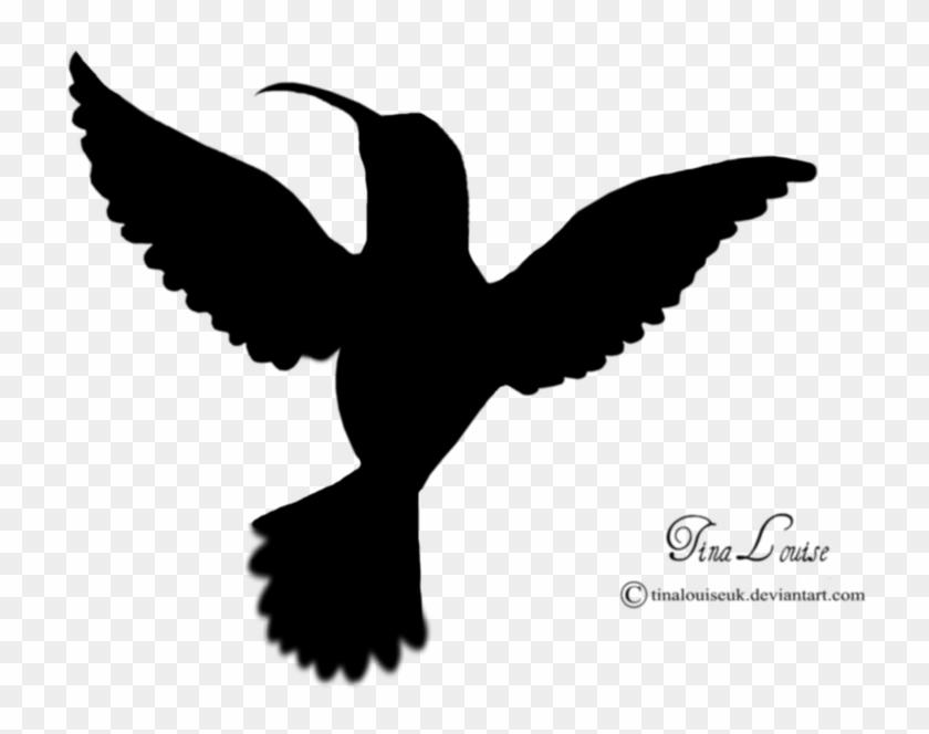 Hummingbird Clipart Black And White - Hummingbird Stencils - 2 Pc Stencil Set 8x10 14 Mil #1132341