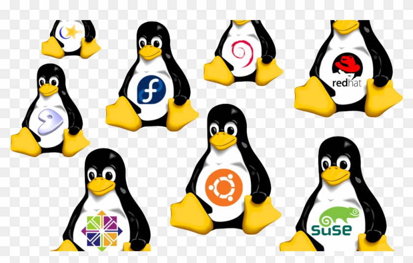 A Primer For Big Data - Linux Distributions Png #1132757