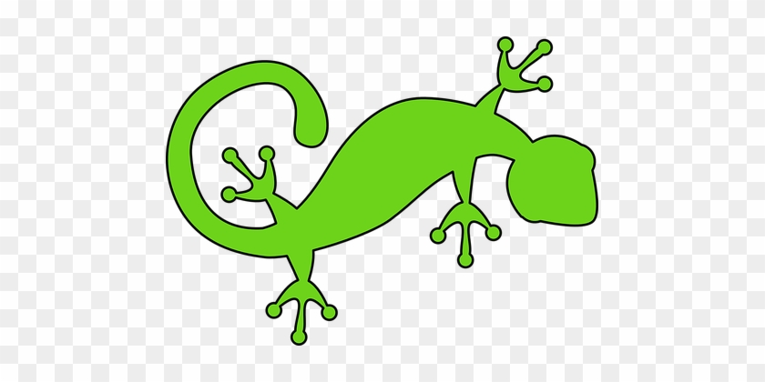 Lizard Gecko Green Animal Nature Reptile W - Green Lizard Clip Art #1135680