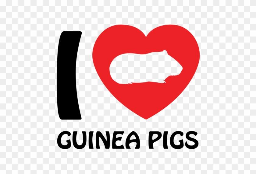 Love Guinea Pigs - Guinea Pig Shirt #1136729