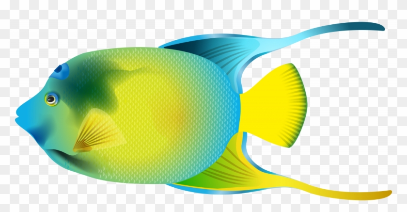 Gallery Image Of Confidential Fish Clip Art For Kids - Angelfish Clipart #1141179