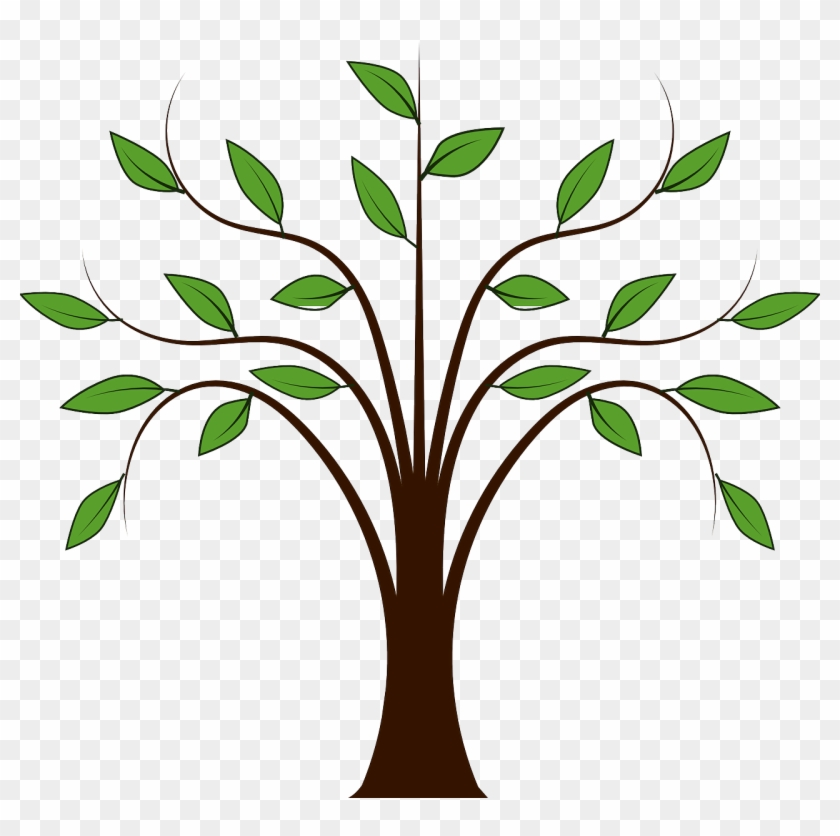 Forest Leaves Nature Plant Png Image - Cartoon Tree With Branches #1141340