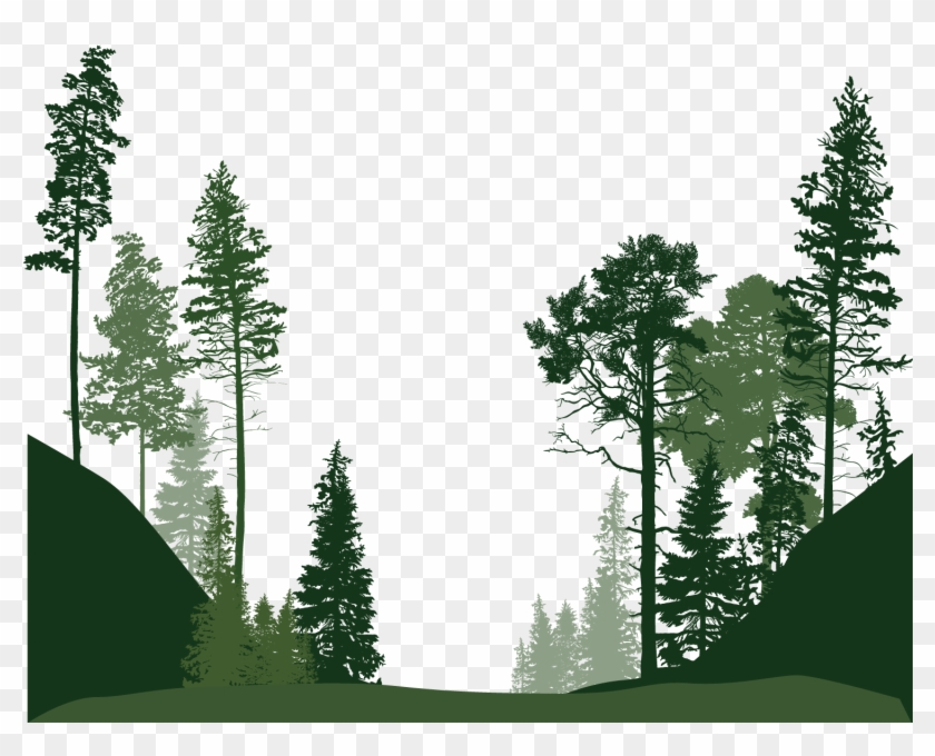 Forest Euclidean Vector Tree - Forest Tree Vector Png #1141386
