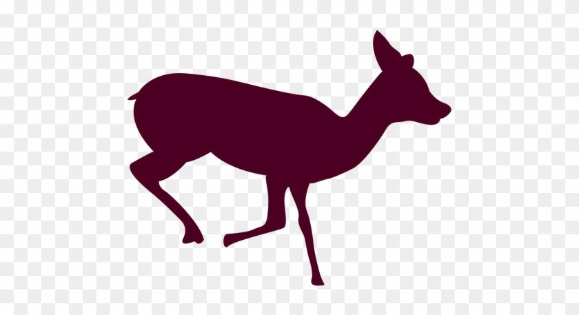Deer Free Png Transparent Background Images Free Download - Deer Running Sequence 1 #190921