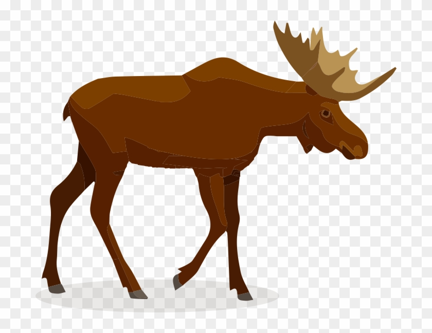 Bobcat - Moose #191147