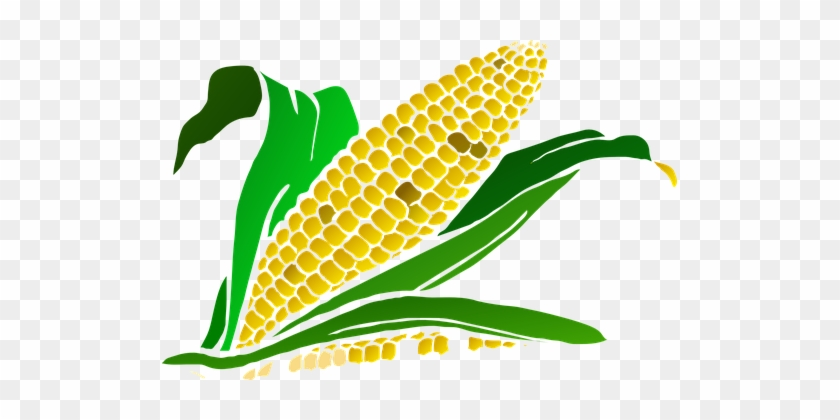 106 Free Vector Graphics Of Crop - Maize Plant Clipart #192842