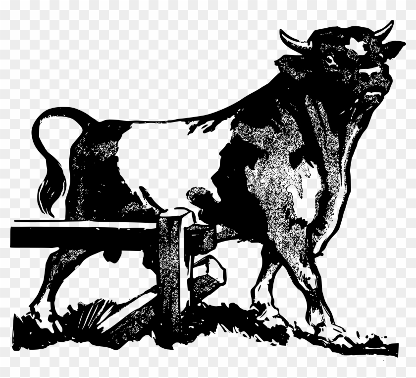 Big Image - Bull Cow Clipart #192946