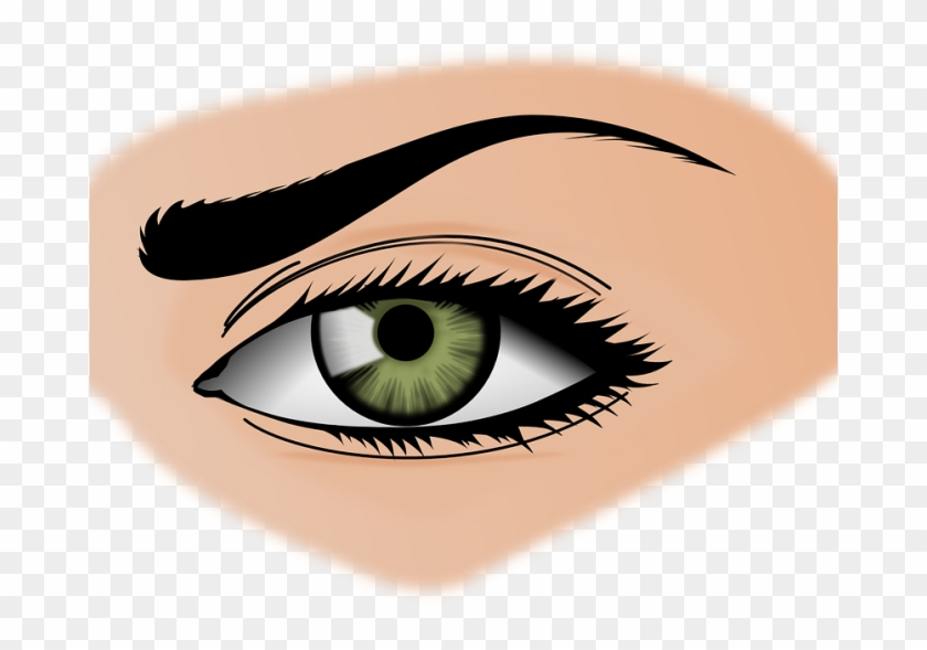 Eye Color Human Eye Clip Art - Entertaining, Vol 6 - Image Sounds - Download #1146002