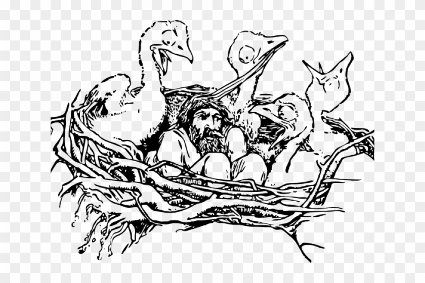 Nest Clipart Sketch Bird - Bird In Nest #1146727