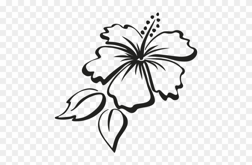 Outline Of Hibiscus Flowers Free Transparent Png Clipart Images Download