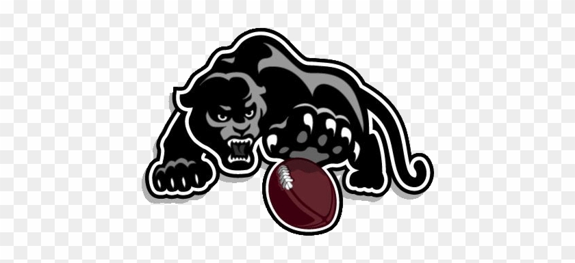 Panther W Ball Left - Football Strath Haven High School #1150229