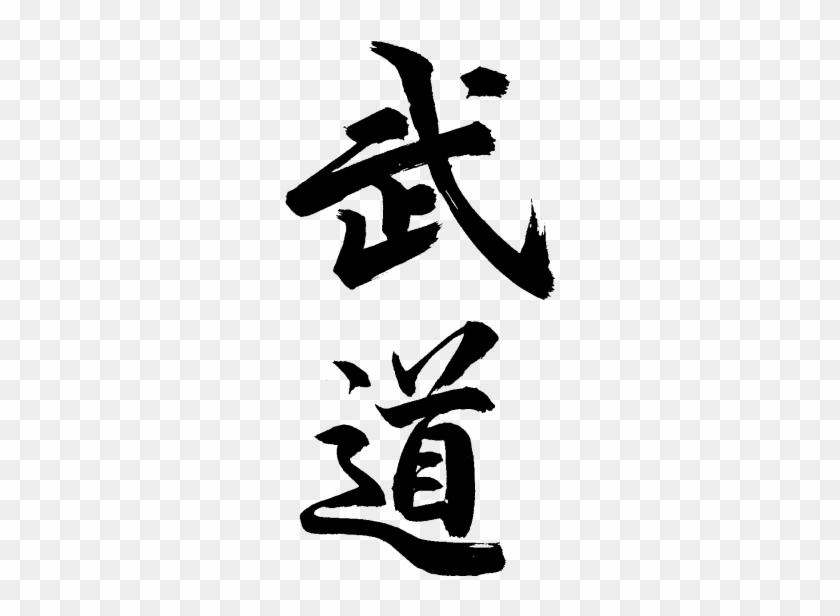 From Traditional Martial Arts, To Mma - Voie De La Plume, Voie Du Sabre #1154046