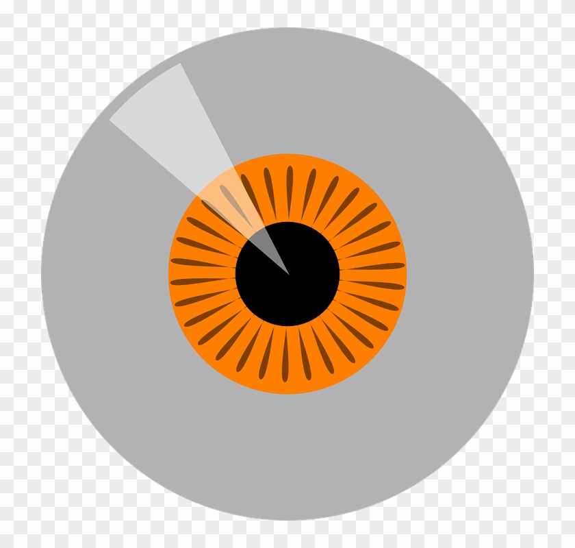 Orange, Hazel Iris Eye Realistic Vector Set Design - Portrait Of A Man #1157858