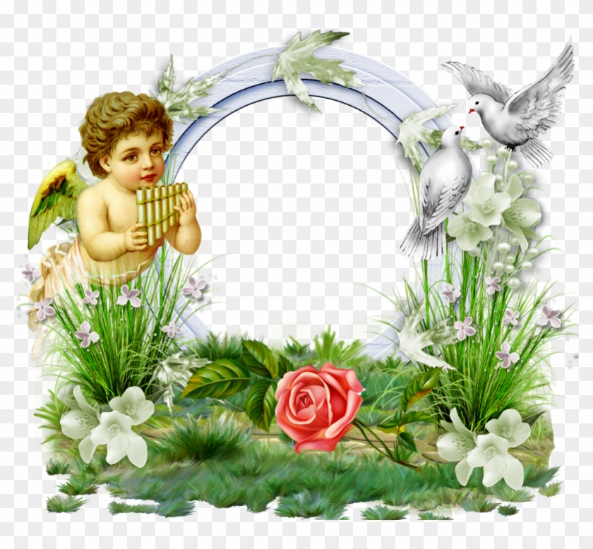 Transparent Photo Frame With Angel And Doves - Angel Borders And ...