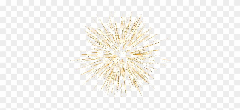 Free Animated Fireworks Clipart - Macro Photography - Free