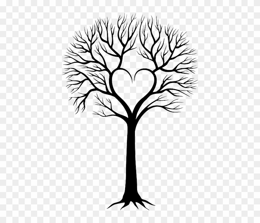Ücretsiz Vektör Çizim - Family Tree Drawing Ideas #1168009
