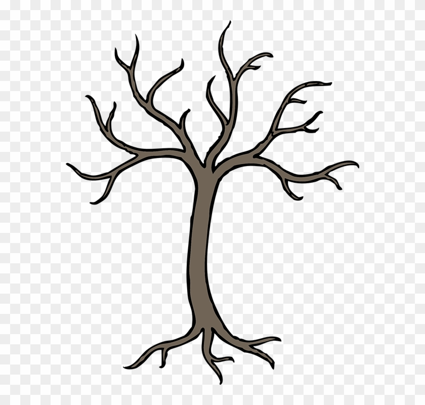 Tree, Winter, Grey, Perennial, Dried, No Leaves - Tree With Branches Drawing #1170296