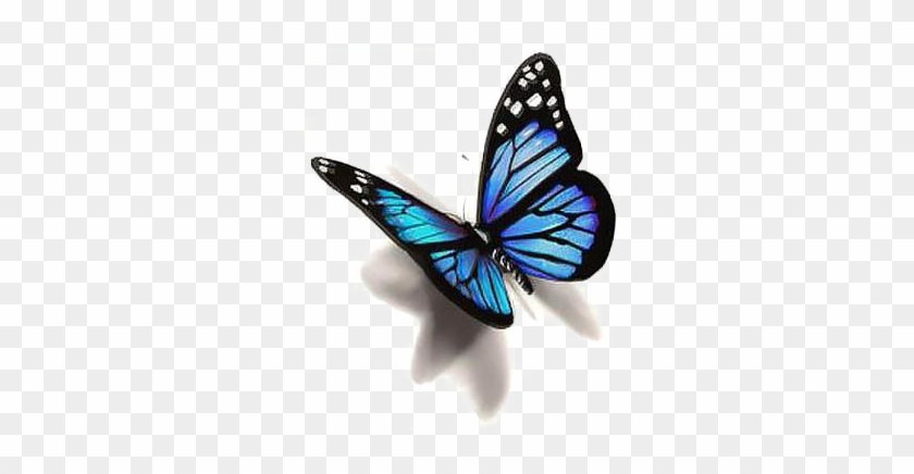 Blue Butterfly Png Photo - Butterfly Tattoo Design #1180167