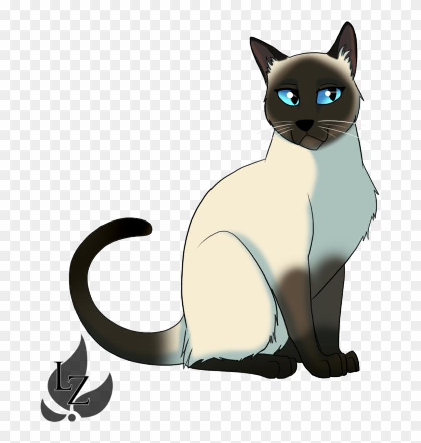 Siamese Cat Easy Drawing