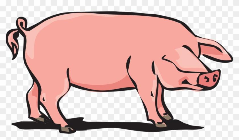 Pork Clipart Farm Pig - Animal Farm Pig #193166