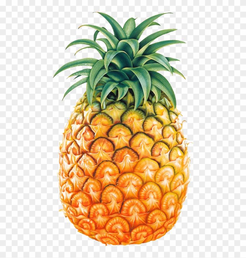 Juice Pineapple Clip Art - Pineapple Png #195557