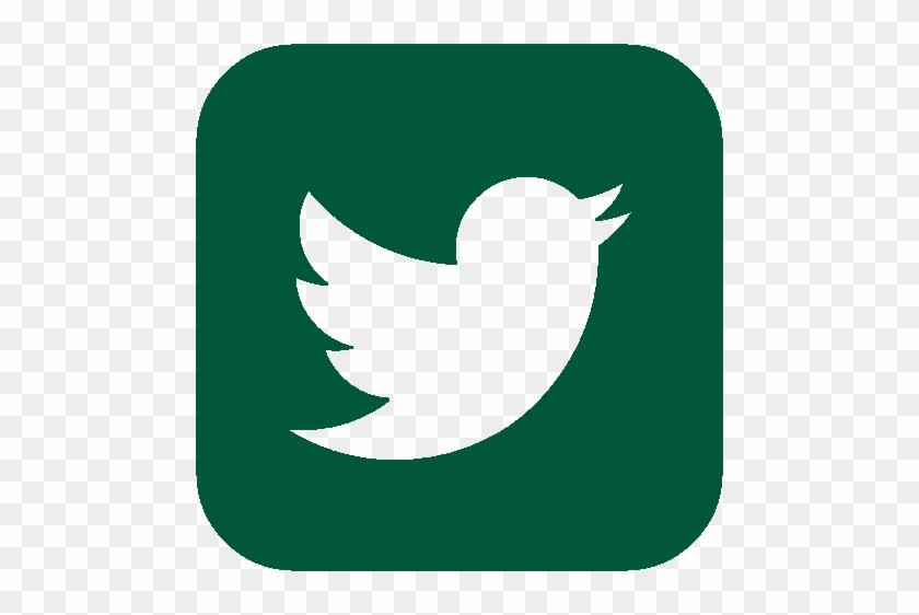 Twitter - Sigo De Twitter #196051
