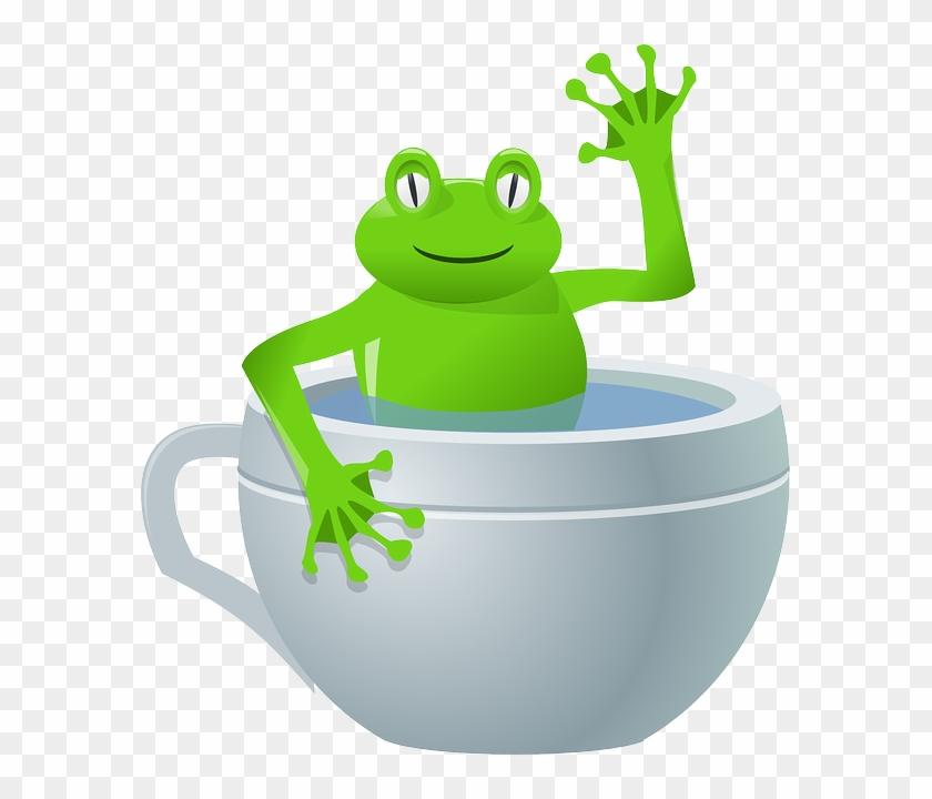 Frogs, Frog, Cup, Cartoon, Mug, Teacup, Drink, Tea, - Frog In A Cup #196163